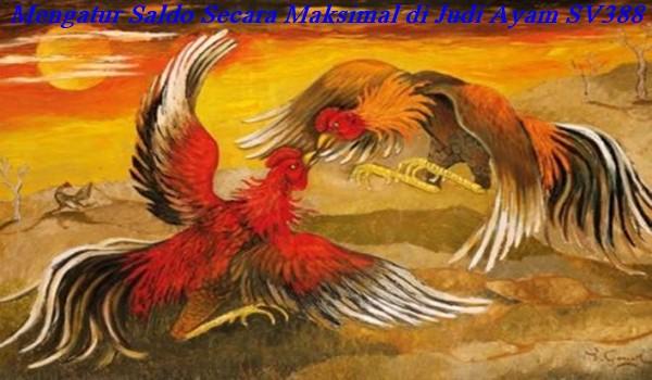 Mengatur Saldo Secara Maksimal di Judi Ayam SV388